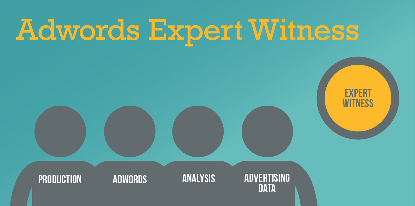 Adwords Expert Witness